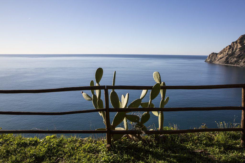 Il Convento di Monterosso al Mare